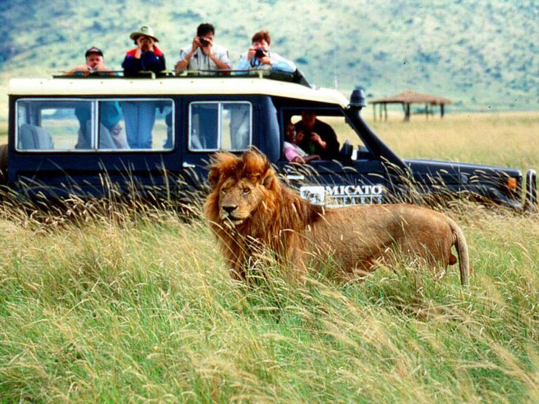 safari-africano-8